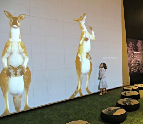 lost-creatures-queensland-museum-3d-dinosaurs4